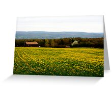 Dundee Mustard Field Greeting Card