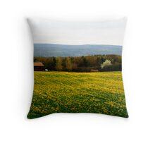 Dundee Mustard Field Throw Pillow