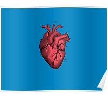 Vintage Anatomical Heart Illustration Poster
