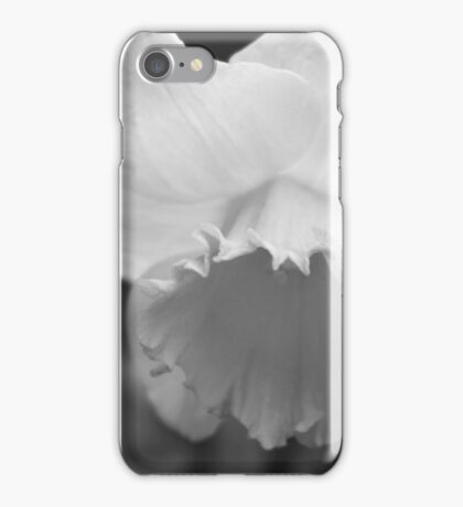 Daffodil - Vancouver 2015 iPhone Case/Skin