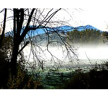'Fosangs Land' King Valley, Victoria Photographic Print