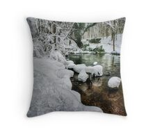 Snowy River Bank Throw Pillow