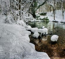 Snowy River Bank by Ian Mitchell