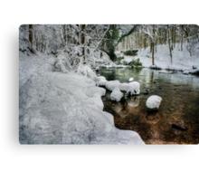 Snowy River Bank Canvas Print