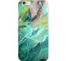 The Four Seasons 1.0 iPhone Case/Skin
