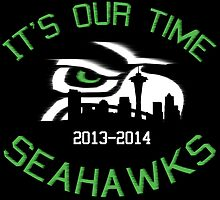 IT'S OUR TIME SEAHAWKS by fancytees