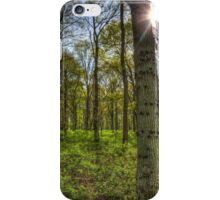 The Sun Touched Forest iPhone Case/Skin