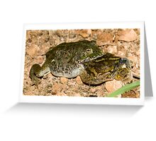 It's a dog-eat-dog.... sorry, frog-eat-frog world out there Greeting Card