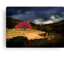 Shrapnel Valley - Gallipoli Canvas Print