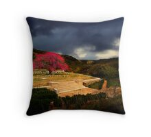 Shrapnel Valley - Gallipoli Throw Pillow