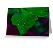 Wet Darkness Greeting Card