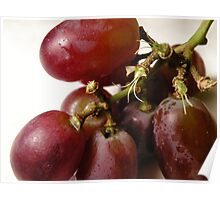 purple grapes Poster