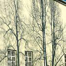 "City Life - ""Street & Shadows"" p.3 by Denis Molodkin"