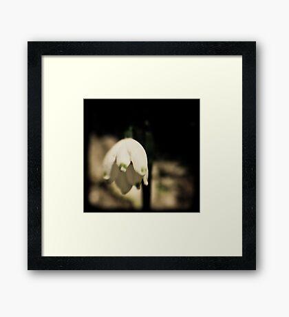 TTV Bell Framed Print