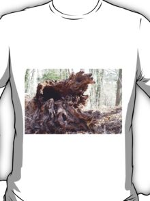 Old growth tree, down T-Shirt