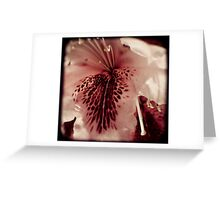 Floral Measles Greeting Card