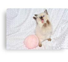 Goofy Kitty Canvas Print