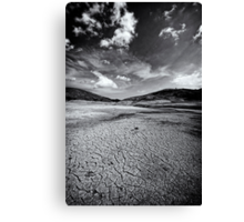 Parched In B&W Canvas Print