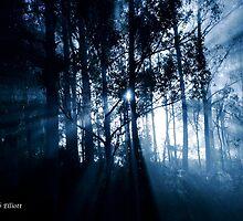 Ranelagh Mist by mooksool