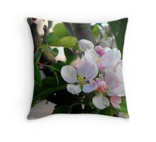 Apple Blossoms in May Throw Pillow