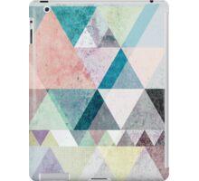 Graphic 21 iPad Case/Skin