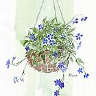Electric blue hanging basket, by Maree  Clarkson