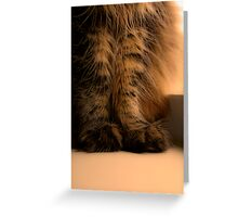 Furry Feet Greeting Card