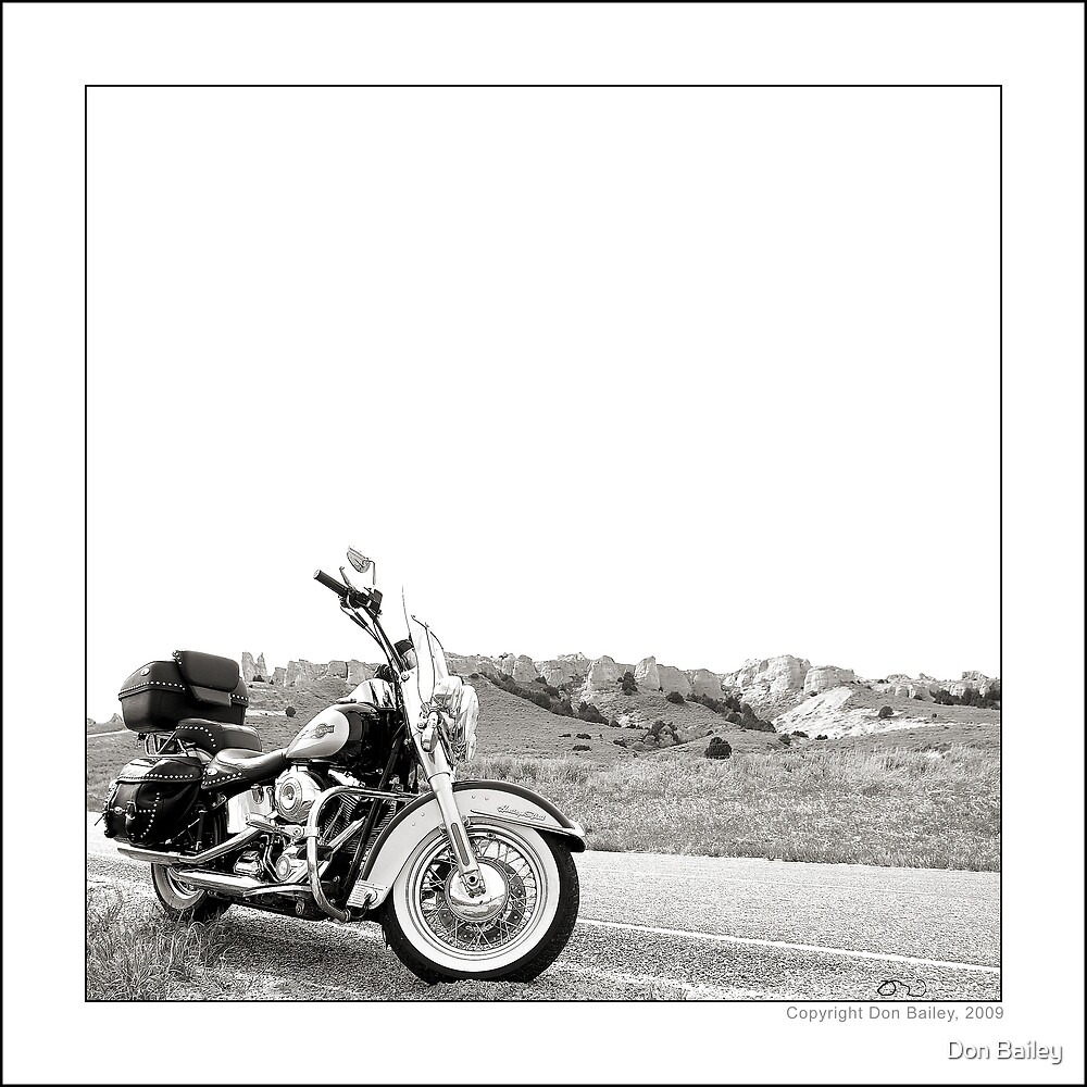 """Harley at Hawk Springs, Wyoming"" by Don Bailey"