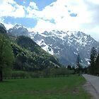 Road trip to the Alps by Diego Marando