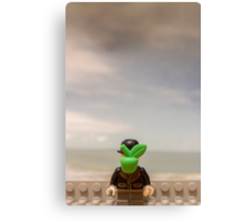 The Son of Lego Canvas Print
