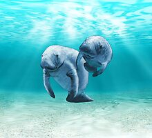 Two Manatees Swimming by BailoutIsland