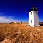 Long Point Light Cape Cod by capecodart