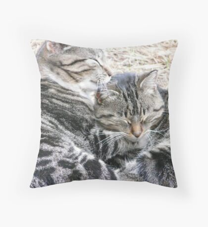 Daughter, Wash Your Ears Throw Pillow
