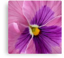 Pink Purple Pansy Flower Macro Canvas Print