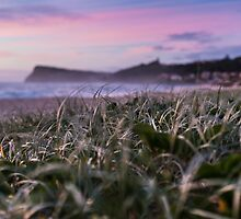 Lennox Head by Daniel Rankmore