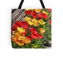 Tulips on First Avenue Tote Bag
