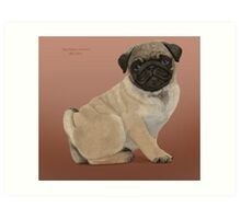 Pug puppy cuteness Art Print