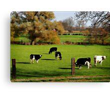 Pasture Canvas Print