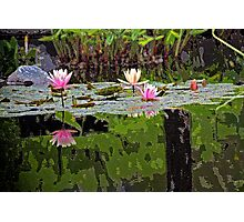 ~tranquil~ Photographic Print