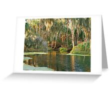 Gemini Springs Greeting Card