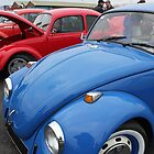 Row of Beetles by Vicki Spindler (VHS Photography)