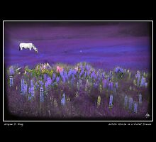 White Horse in a Violet Dream Poster by Wayne King