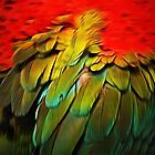 Scarlet Macaw in disguise by brijo