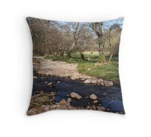 Meandering through the Valley Throw Pillow