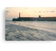 Harbour Arm Metal Print
