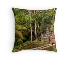 ...landmark... Throw Pillow