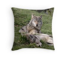 Timber Wolves at Rest Throw Pillow