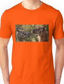 Sweet Llamas Unisex T-Shirt