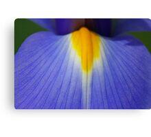 Blue and Yellow Tongue Canvas Print