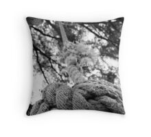 Playtimes Past Throw Pillow